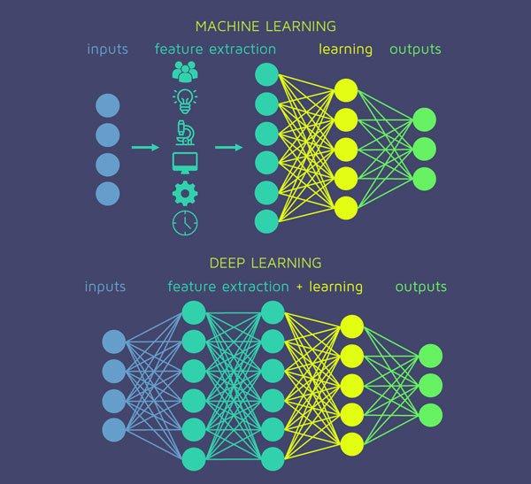 Một nơ ron thần kinh trong não bộ con người có sức mạnh điện toán phức tạp cỡ nào?