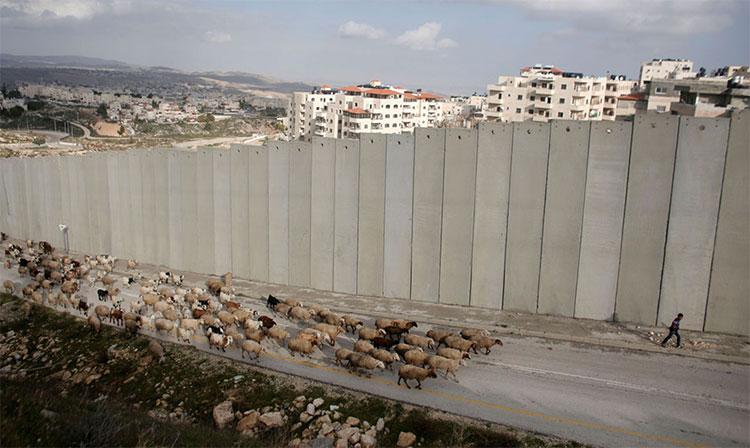 Một thế giới bị chia tách: Những bức tường ngăn trở các quốc gia