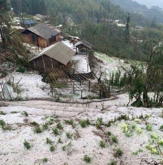 Mưa đá bất ngờ phủ trắng đường, sườn đồi ở Lai Châu