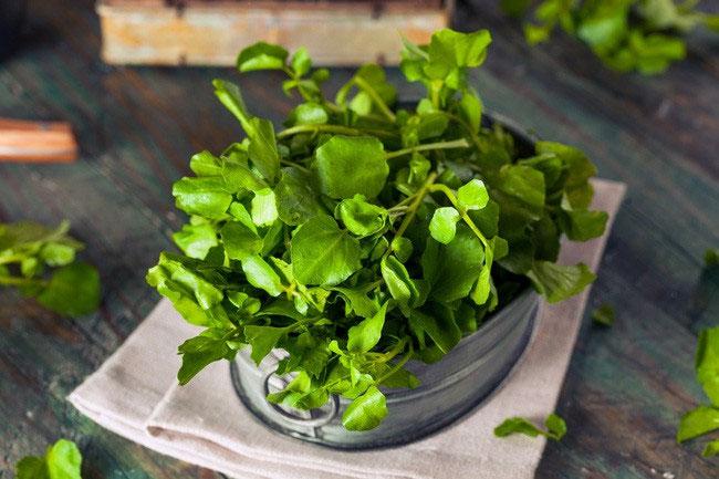 Mùa đông tăng cường ăn cải xoong để đạt được những lợi ích tuyệt vời này!