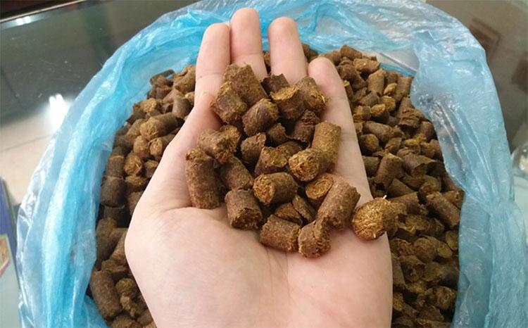 Mục sở thị công nghệ sản xuất thức ăn cho gia súc và cây trồng từ rơm, lá mía