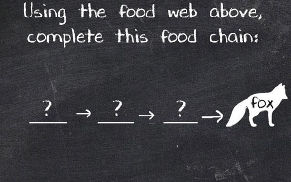 Muốn có cơ hội trở thành vĩ nhân, ít nhất phải trả lời được 7 câu này