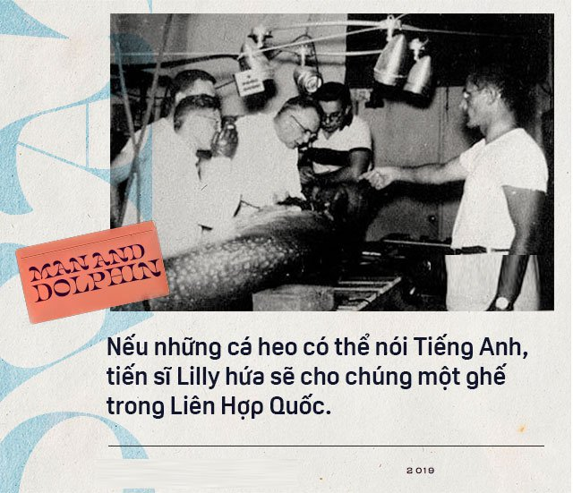 Năm 1965, một cô gái dạy cá heo nói Tiếng Anh, cuối cùng con cá đã yêu cô ấy điên cuồng