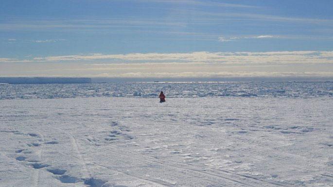 Não các nhà khoa học co lại sau chuyến thám hiểm Nam Cực