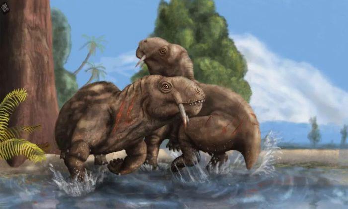 Nghiên cứu hóa thạch cho thấy không phải tất cả động vật có răng kiếm đều là động vật săn mồi