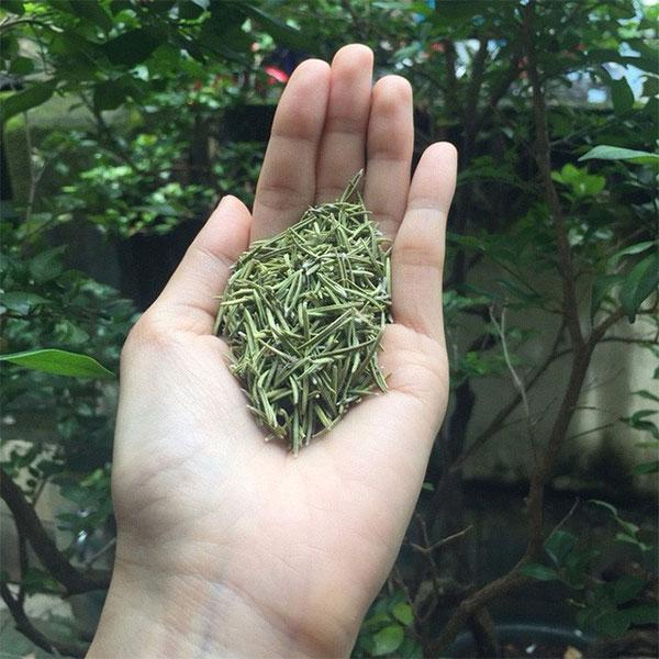 Ngôi làng có tới 300 người sống 100 tuổi nhờ ăn lá gia vị này!