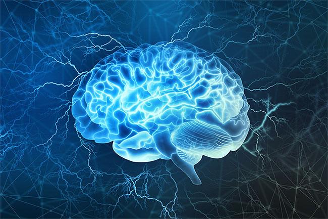 Người có não to sẽ thông minh hơn, nhớ lâu hơn?