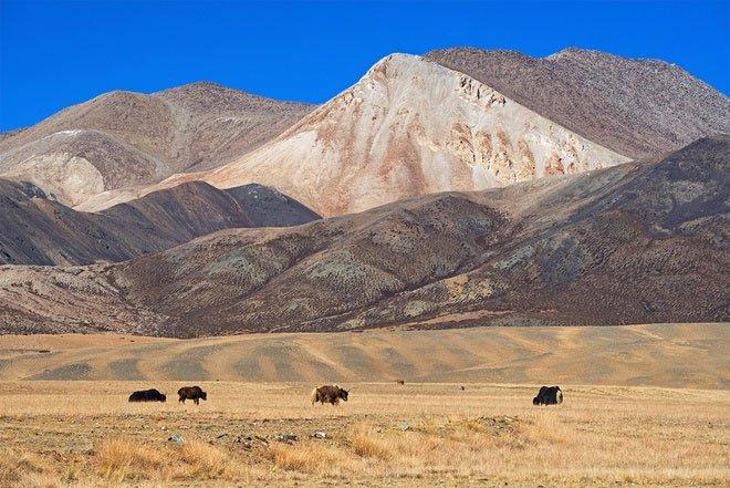 Nhóm nghiên cứu Trung Quốc bắc loa cầu mưa ở Tây Tạng