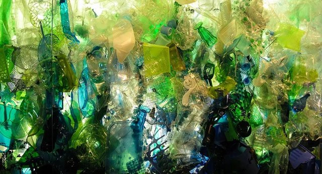 Nhựa dưới đáy đại dương trở thành nơi sinh sống của nhiều sinh vật biển