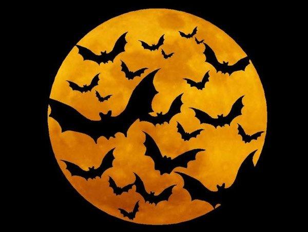 Những biểu tượng bí ẩn và đáng sợ trong ngày Halloween huyền bí
