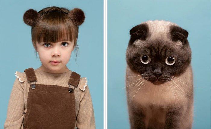 Những chú mèo giống người nhất thế giới