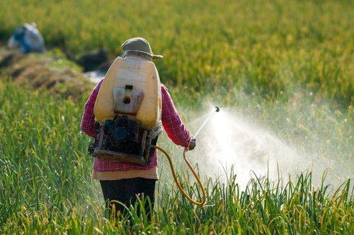 Những công nghệ sinh học nông nghiệp đang làm thay đổi cuộc sống