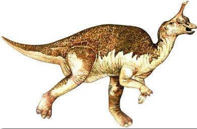 Những loài khủng long hình thù quái đản nhất thế giới