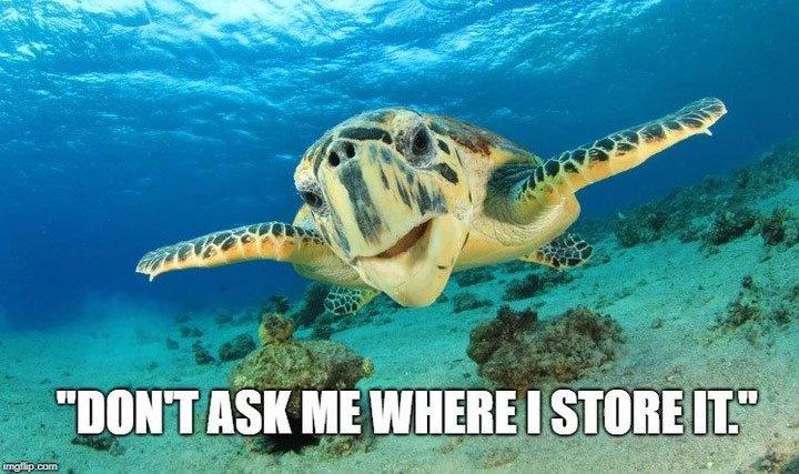 Những loài sinh vật dưới đáy biển tìm thấy một nửa của mình bằng cách nào?
