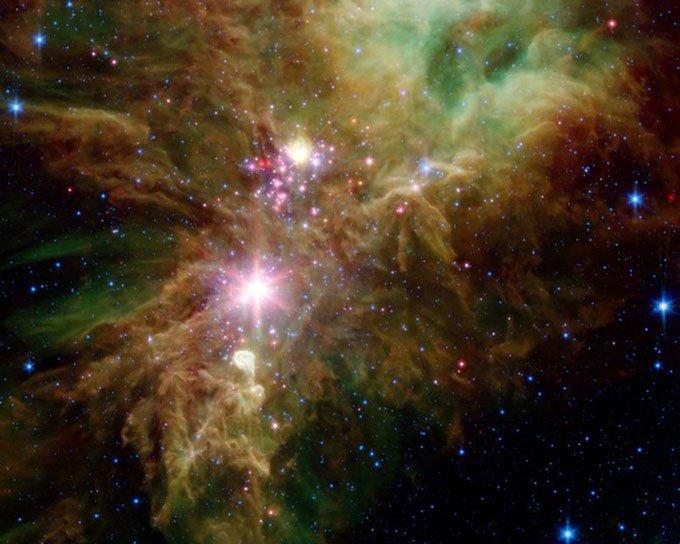 Những ngôi sao sơ sinh trong cụmBông tuyết