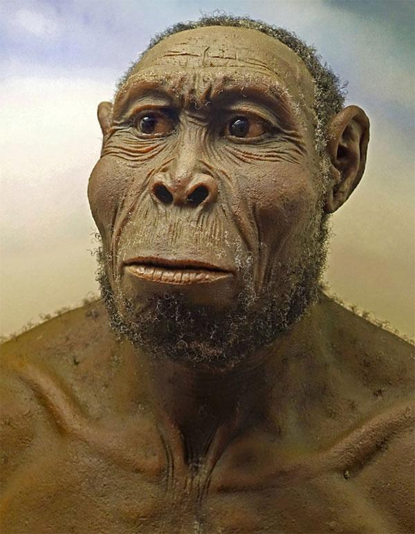 Những người anh em của loài người đã biến mất trước bình minh của nền văn minh như thế nào?