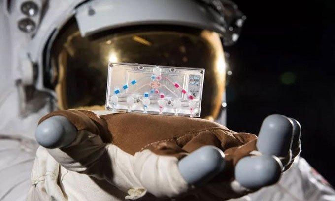 Những thí nghiệm độc đáo trên trạm ISS