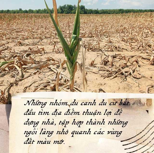 Nông nghiệp đã suýt chút nữa phá hủy nền văn minh nhân loại