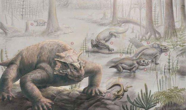 Phải mất 10 triệu năm sự sống trên Trái đất mới có thể phục hồi sau sự kiện The Great Dying