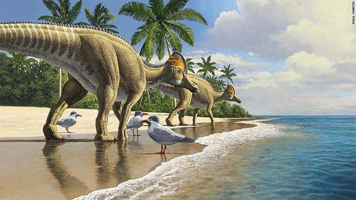 Phát hiện bằng chứng cho thấy khủng long đã đi khắp các đại dương