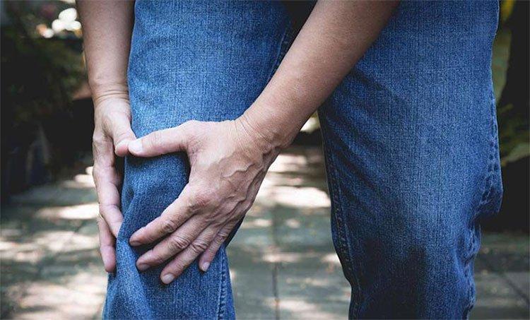 Phát hiện chất kháng viêm trên nấm đông trùng hạ thảo