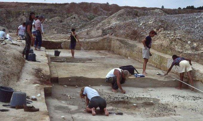 Phát hiện công cụ 500.000 năm tuổi bằng xương ngựa