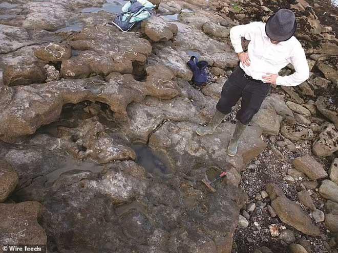 Phát hiện dấu chân của loài khủng long cuối cùng cách đây 110 triệu năm