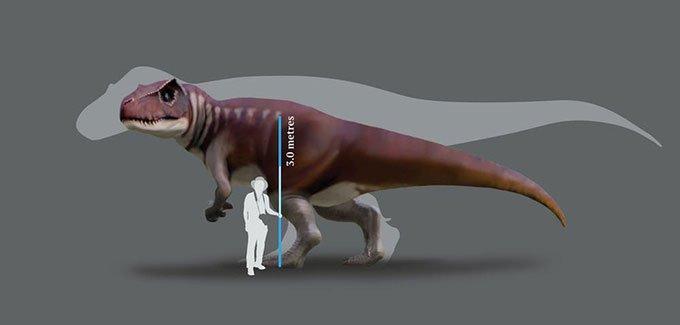 Phát hiện dấu chân quái dị long dài 80cm ở Australia