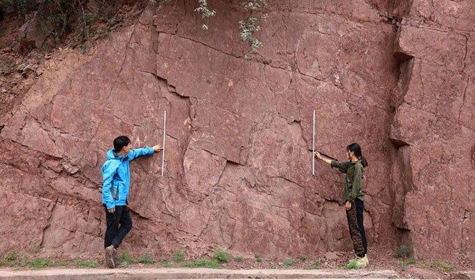 Phát hiện gần 100 dấu chân khủng long khổng lồ