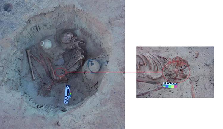 Phát hiện hài cốt 3.700 năm tuổi của phụ nữ sắp sinh ở Ai Cập