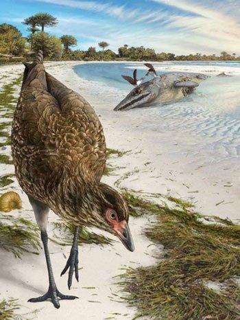 Phát hiện hóa thạch cổ xưa nhất của chim hiện đại