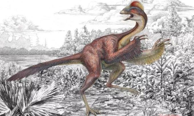 Phát hiện hóa thạch gà địa ngục168 triệu năm