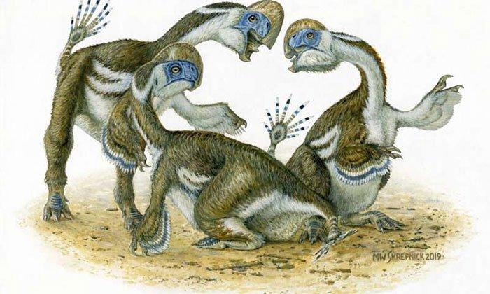 Phát hiện hóa thạch khủng long 2 ngón tay kỳ quái