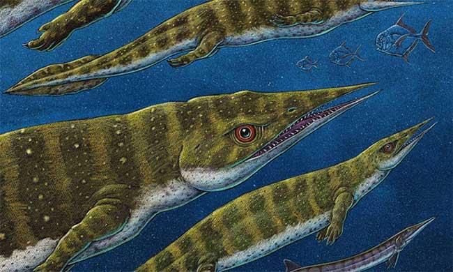 Phát hiện hóa thạch thằn lằn biển 200 triệu năm tuổi