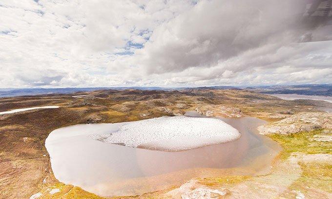 Phát hiện hóa thạch thực vật dưới lớp băng Greenland