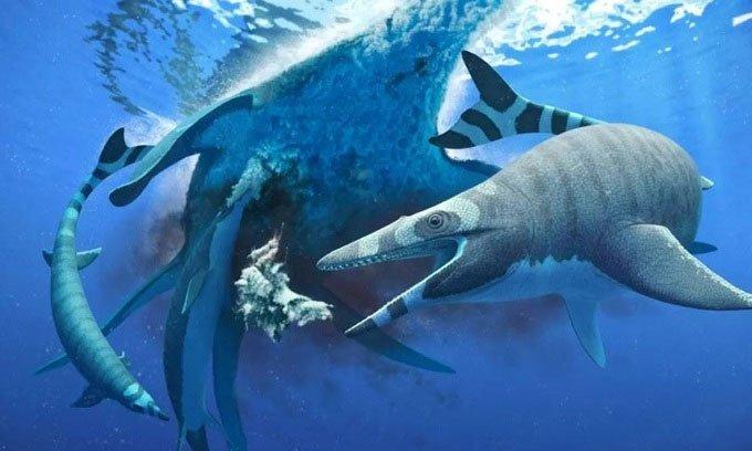 Phát hiện hóa thạch thương long có bộ răng giống cá mập