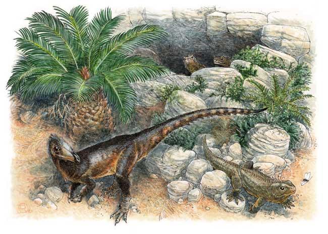 Phát hiện khủng long rồng xứ Wales, kích thước bằng một con gà