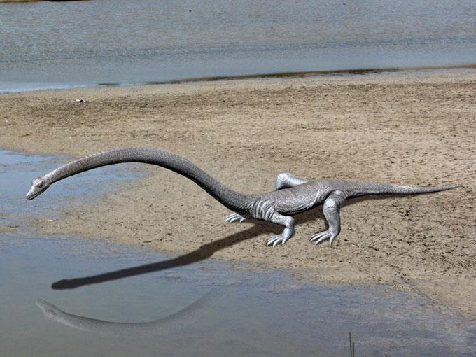 Phát hiện loài bò sát sống trước thời khủng long