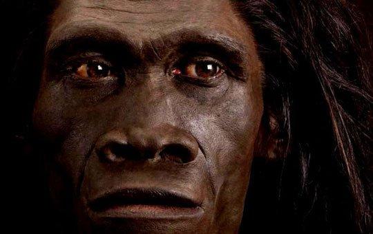 Phát hiện loài người lai chưa từng biết đến ở Châu Á