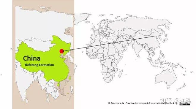 Phát hiện loài thằn lằn bay kỳ dị treo mình lộn ngược trên cây như loài dơi ở Trung Quốc