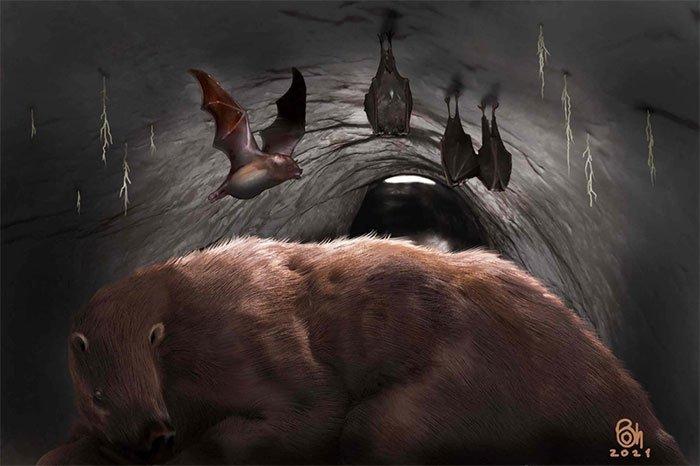 Phát hiện ma cà rồng 100.000 tuổi, hóa đá trong hang quái thú