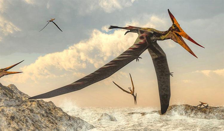 Phát hiện những mảnh hóa thạch của thằn lằn bay đầu tiên tại Cuba