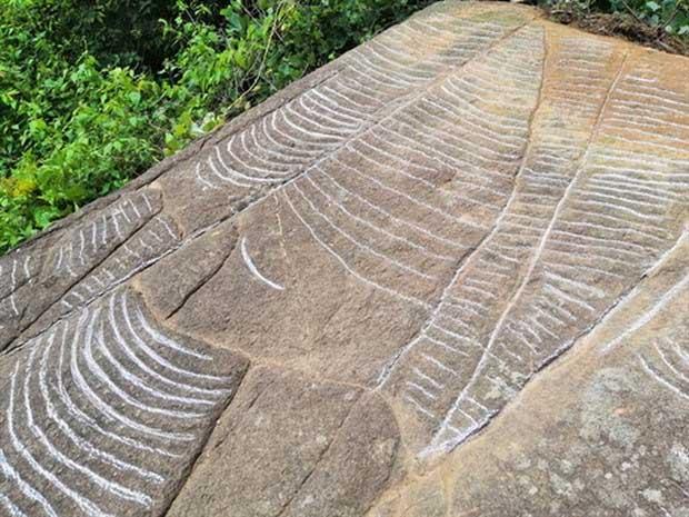 Phát hiện siêu phẩm ruộng bậc thang khắc trên đá cổ ở Mù Cang Chải