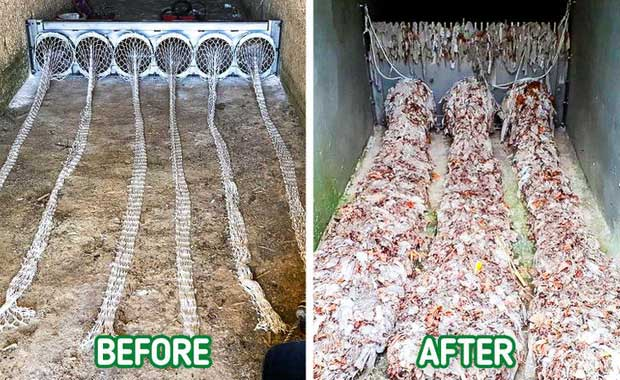 Phát minh đặc biệt giúp thế giới thoát khỏi thảm họa rác thải