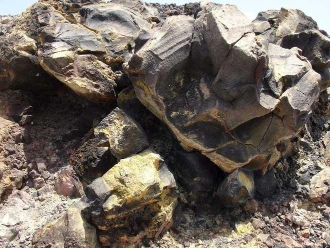 Quân đội vào cuộc, giải mã bí ẩn một số lượng lớn động vật chết ở Thung lũng chết