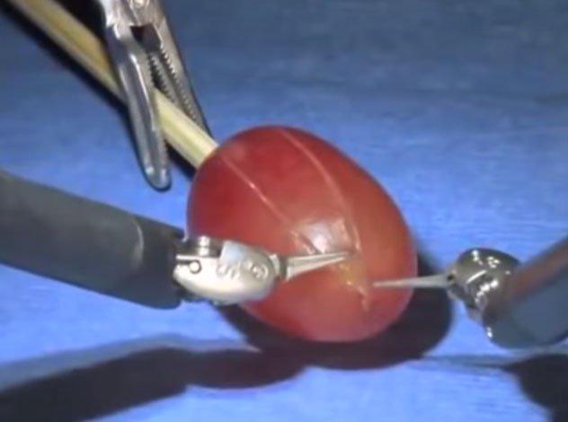 """Robot phẫu thuật """"khoe"""" khả năng đáng kinh ngạc bằng cách mổ… một quả nho!"""
