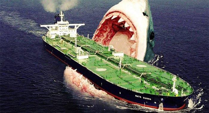 Rợn người cách để siêu cá mập Megalodon có thể dài tới hơn 18 mét