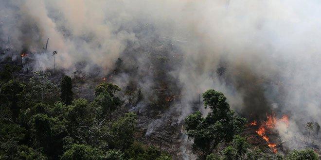 Sau khi hết Covid-19, rừng Amazon sẽ là nguồn lây nhiễm virus corona kế tiếp và lỗi hoàn toàn nằm ở con người