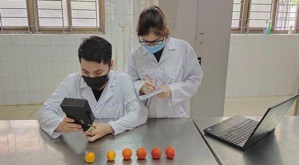 Sinh viên chế tạo thiết bị đo độ chín cà chua