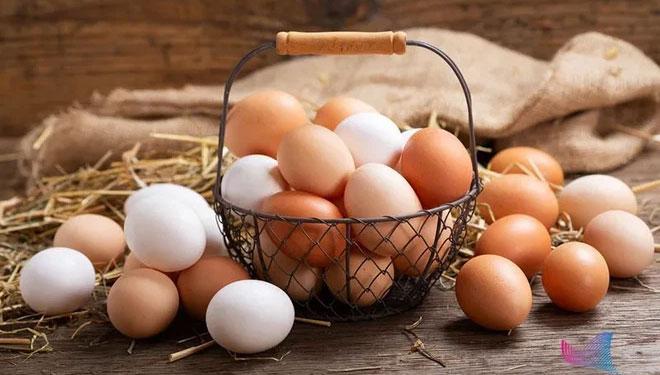 So sánh hàm lượng dinh dưỡng của trứng gà, trứng vịt, trứng cút... loại nào bổ dưỡng nhất?